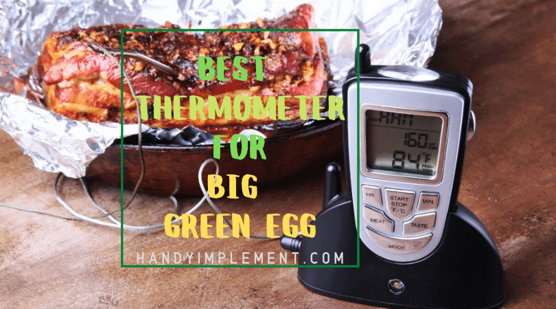 best thermometer for big green egg